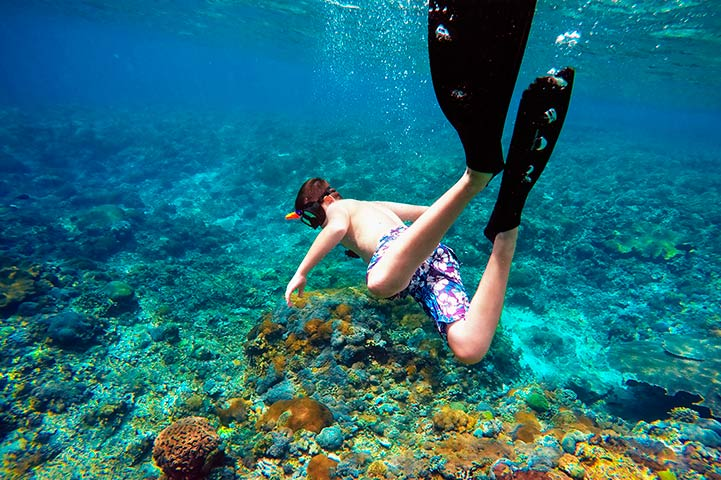Diving e Snorkeling